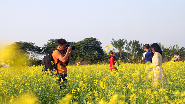 A boy takes a photo of his friend at the canola field.