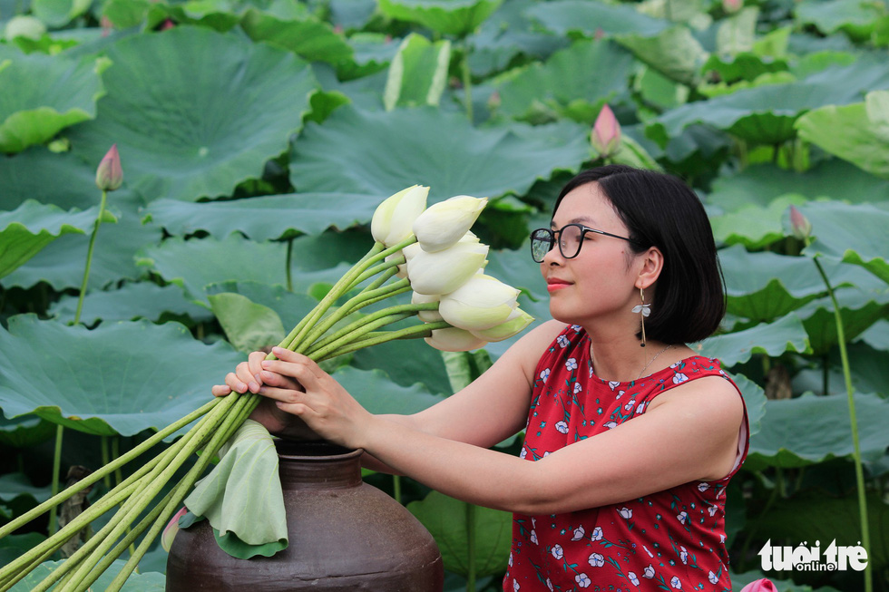 A girl poses with lotus flowers in Hanoi. Photo: Tuoi Tre