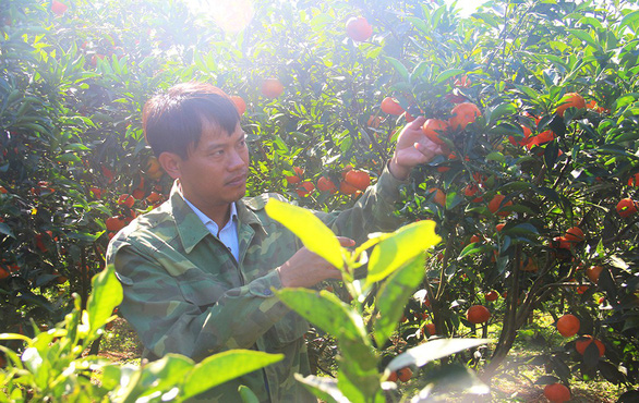 Vietnamese man brings organic agriculture to his village