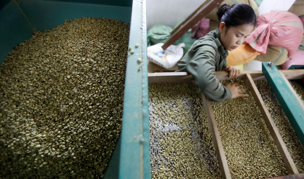 Vietnam March coffee exports likely down 12.7 pct y/y at 150,000 metric tons - gov't data