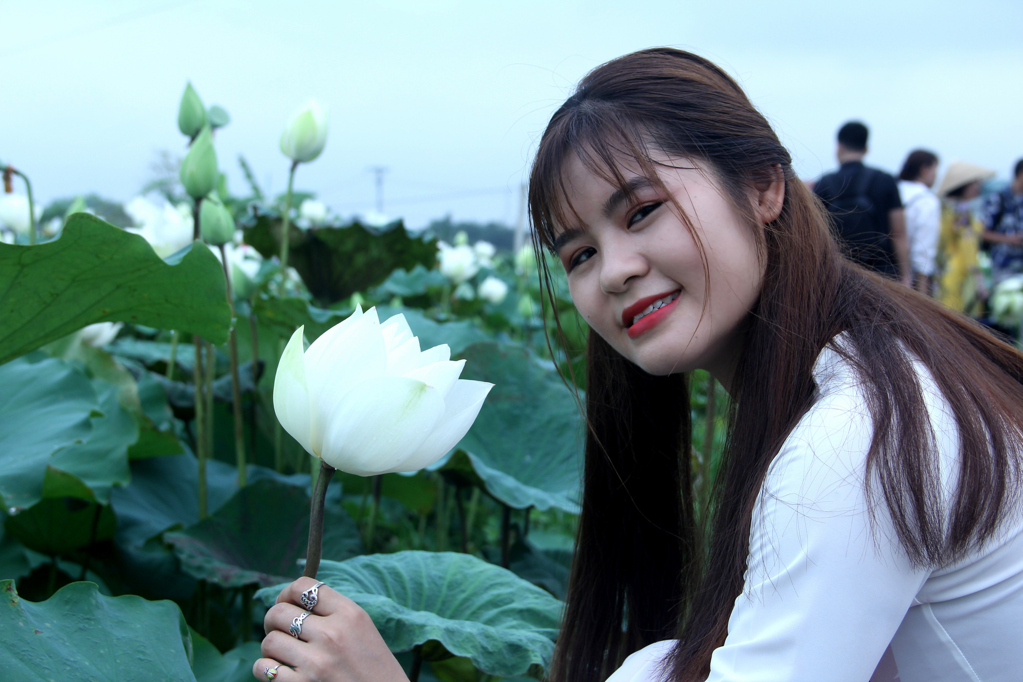 A woman in the traditional Vietnamese 'ao dai' poses with white lotus flowers at a pond in Tam Hung Commune, Thanh Oai District, Hanoi, Vietnam in this photo taken in May 2020. Photo: Duong Lieu / Tuoi Tre