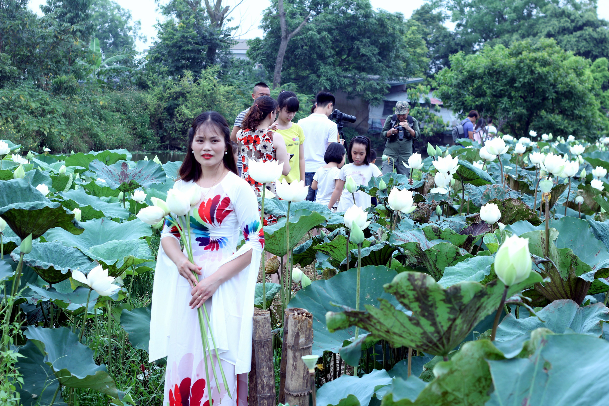 Visitors at a white lotus pond in Tam Hung Commune, Thanh Oai District, Hanoi, Vietnam in this photo taken in May 2020. Photo: Duong Lieu / Tuoi Tre