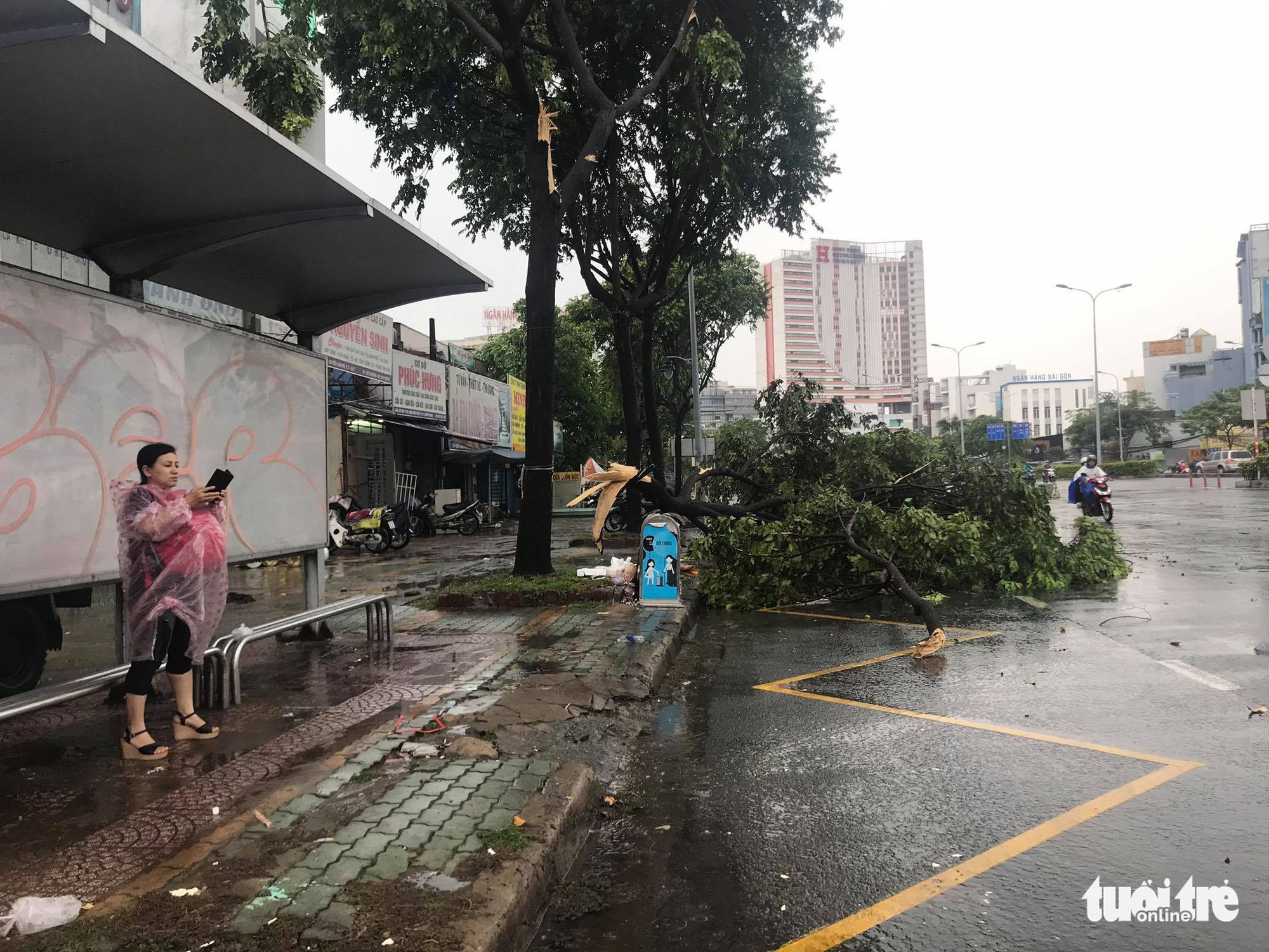 A tree is uprooted during a heavy rain in Binh Thanh District, Ho Chi Minh City, May 30, 2020. Photo: Le Phan / Tuoi Tre