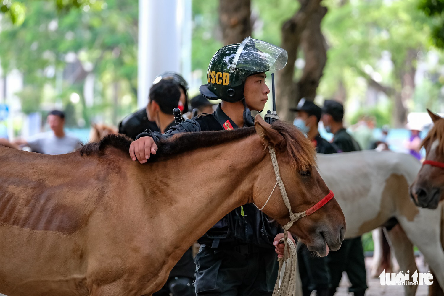 An officer from the Mounted Mobile Police Corps is pictured in Hanoi, Vietnam, June 8, 2020. Photo: Tien Long / Tuoi Tre