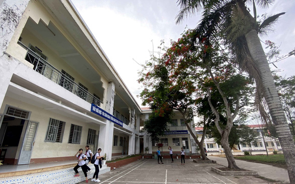 Six-year-old Royal Poinciana trees at Vinh Trinh Middle School in the southern city of Can Tho are pruned to prevent them from falling. Photo: T.Trang/ Tuoi Tre