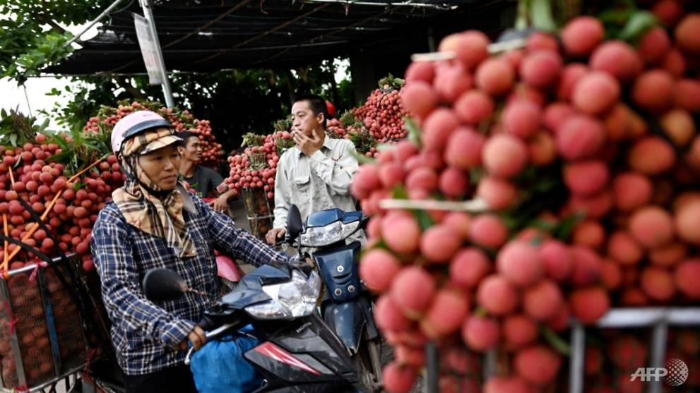 Already a major coffee, rice and catfish exporter, Vietnam has in recent years turned its attention to fruit. Photo: AFP
