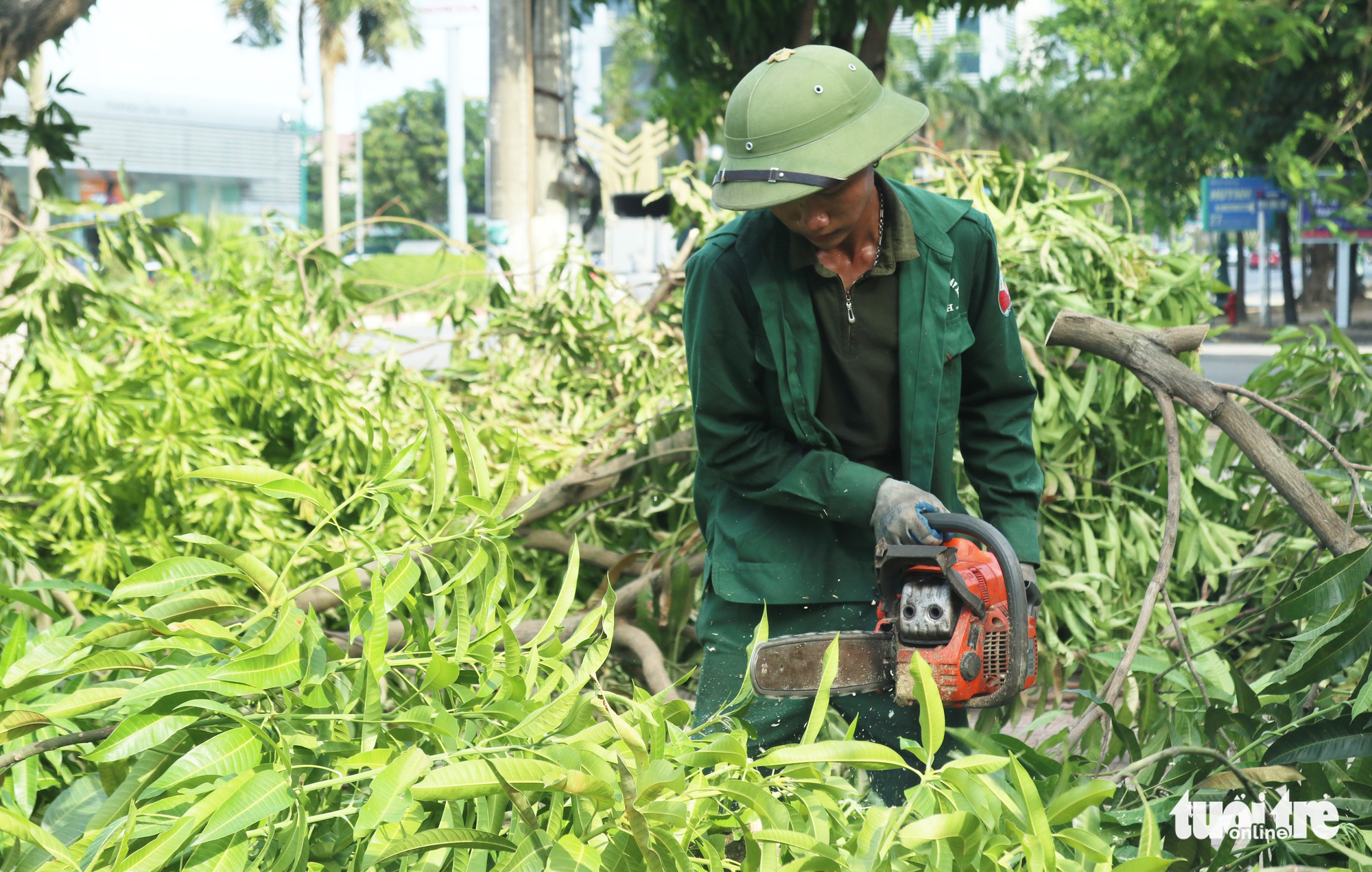A worker uses a chainsaw to chop up big tree branches in Vinh City, Nghe An Province, Vietnam. Photo: Doan Hoa / Tuoi Tre