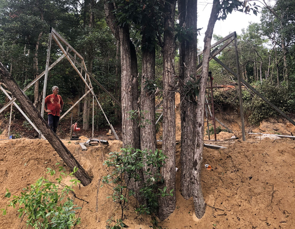 Metal frames are put up to build pre-engineered houses in a resin forest on Con Dao Island off Ba Ria-Vung Tau Province in southern Vietnam. Photo: Dong Ha / Tuoi Tre