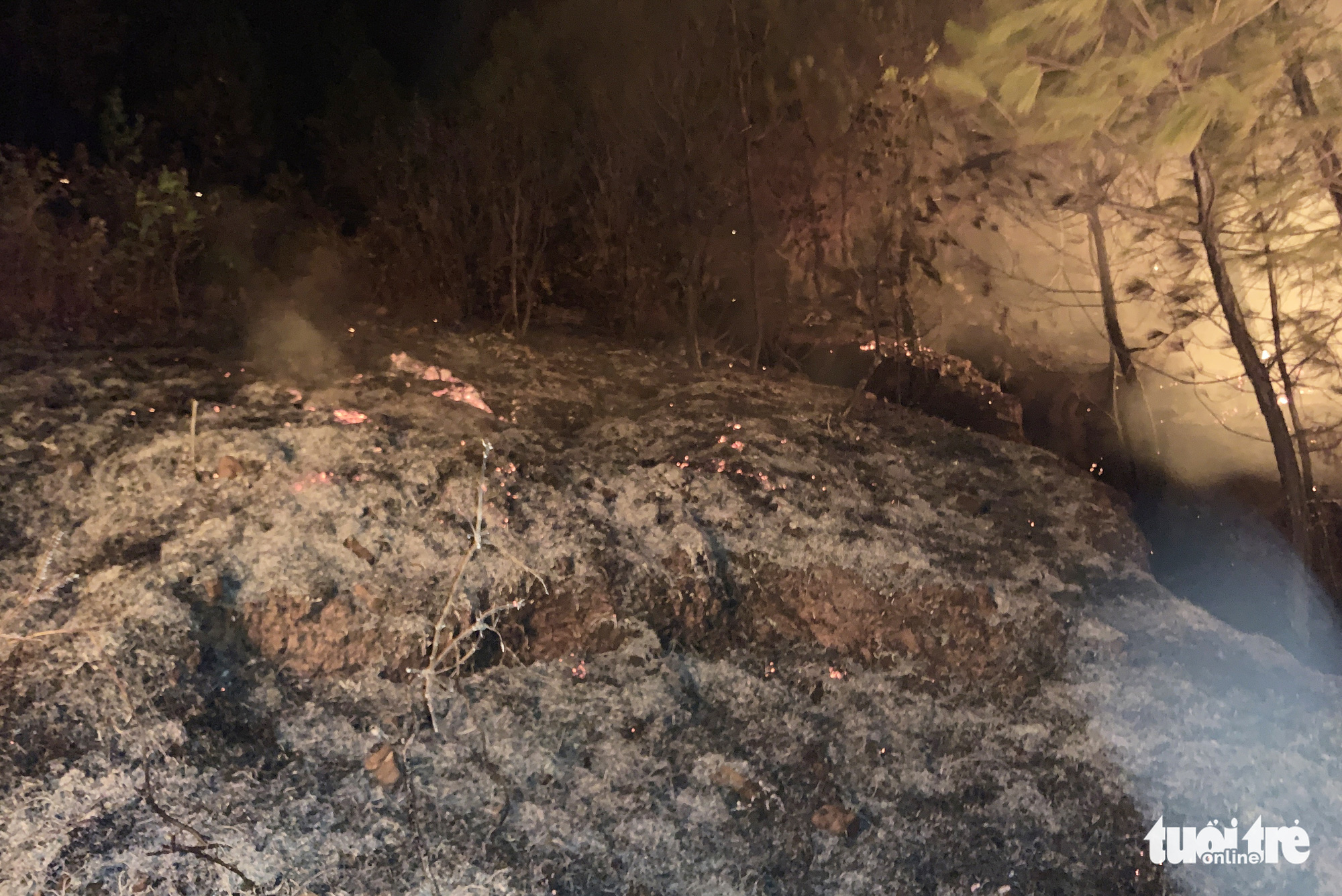 An area of a forest is burned down by a fire in Nghe An Province, Vietnam, June 29, 2020. Photo: Doan Hoa / Tuoi Tre