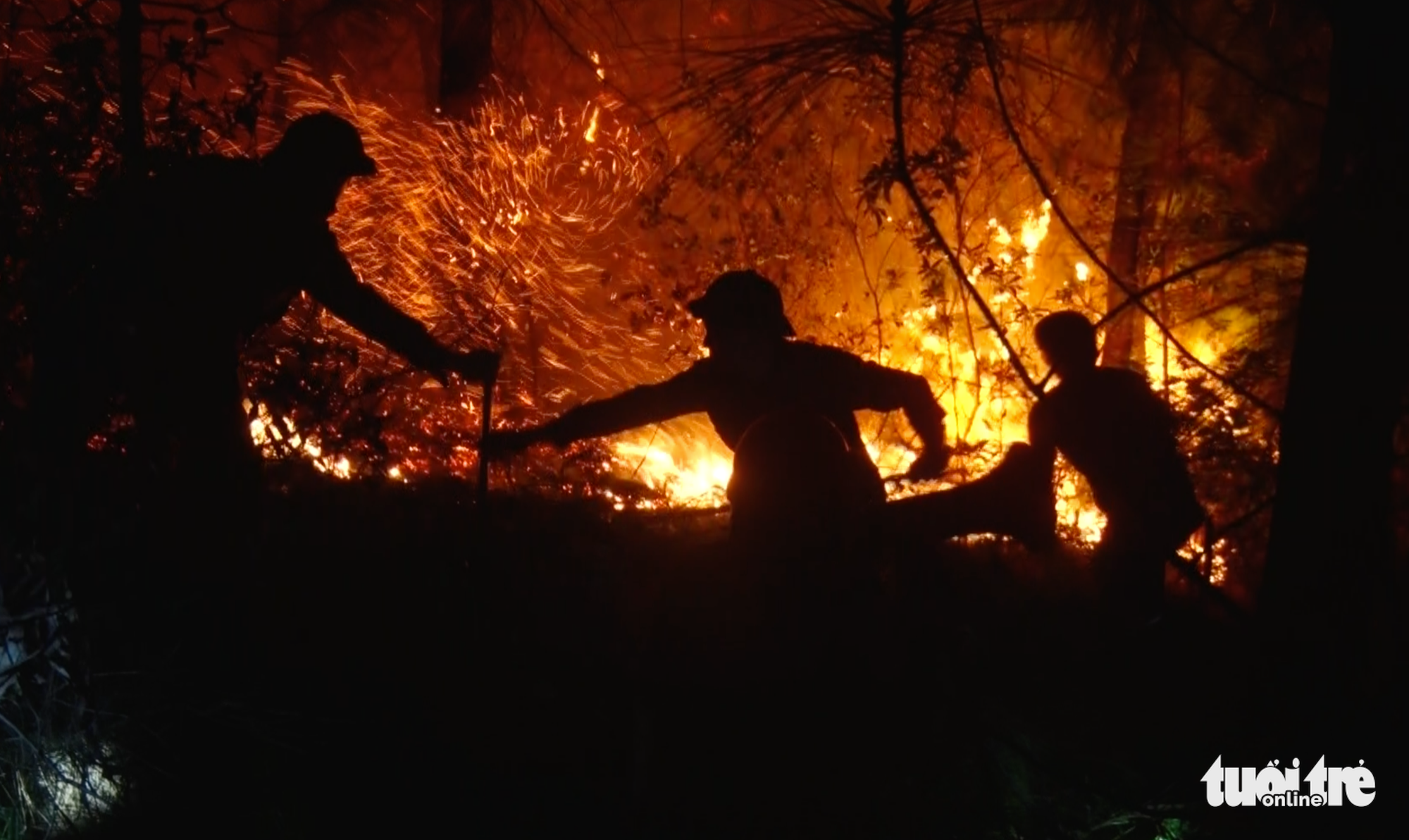 Officers put out a forest fire in Nghe An Province, Vietnam, June 29, 2020. Photo: Doan Hoa / Tuoi Tre