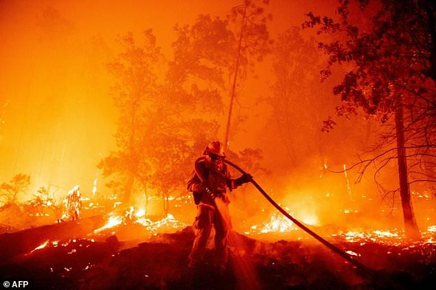 2020 one of three hottest years ever recorded: UN