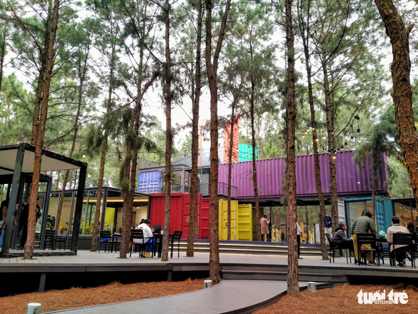New contemporary art space brings sculptures, paintings to pine forest in northern Vietnam