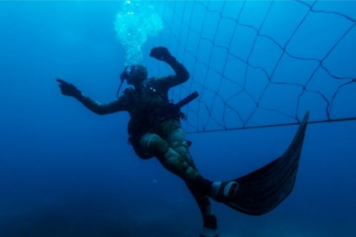Dozens of South African beaches use shark nets, which activists say are ineffective and harm wildlife. Photo: AFP