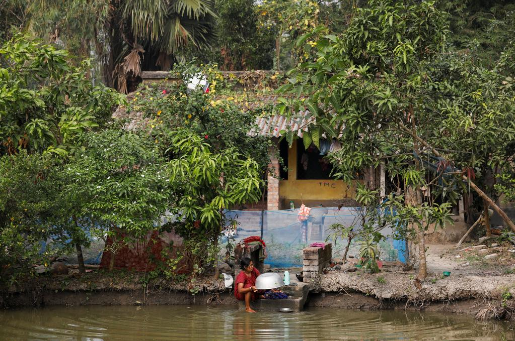 A woman washes utensils in a pond outside her home on the island of Satjelia in the Sundarbans, India, December 15, 2019. Photo: Reuters