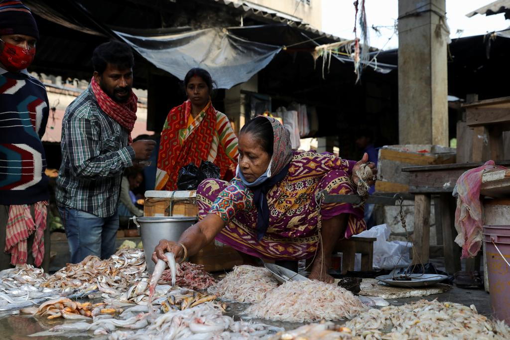 A woman sells fish at a market on the island of Gosaba in the Sundarbans, India, November 22, 2020. Photo: Reuters
