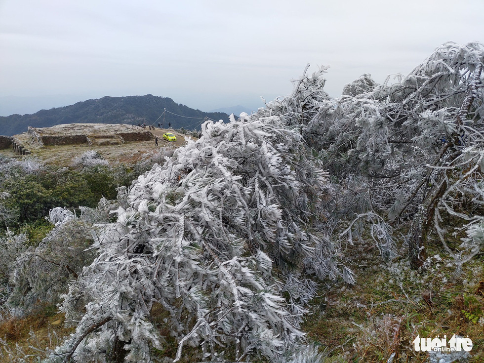 The crystalized landscape on Mount Mau Son in Lang Son Province, January 9, 2021. Photo: Minh Duc