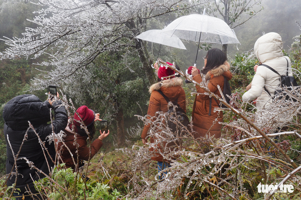 Cold spells blanket northern Vietnam's mountains in rarely seen frost