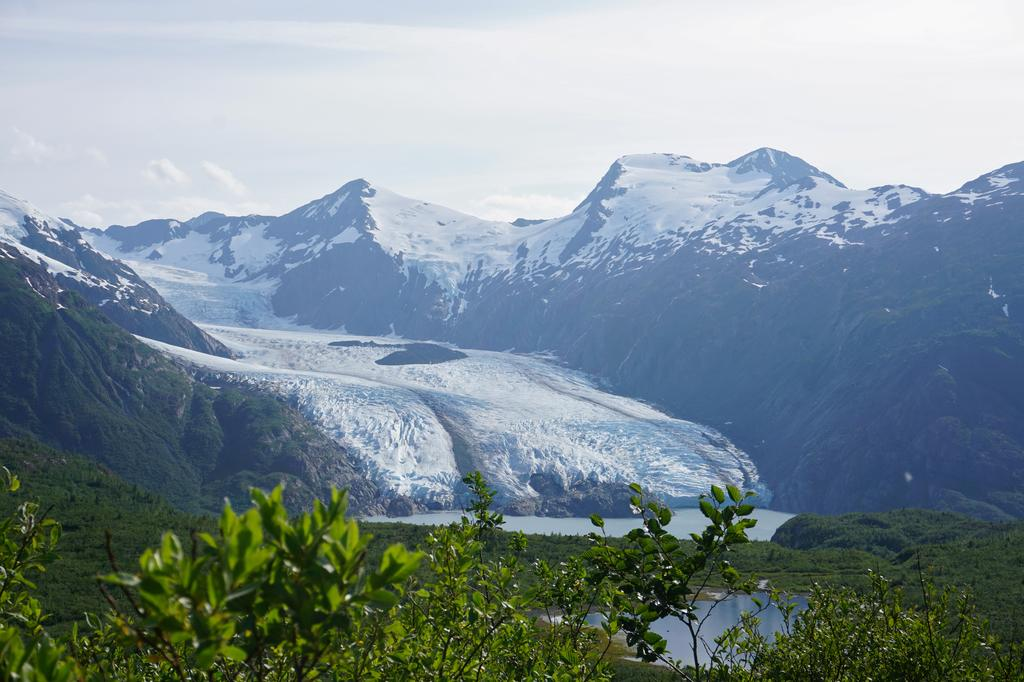 Portage Glacier as seen from Portage Pass in Chugach National Forest in Alaska, U.S. July 7, 2020. Photo: Reuters