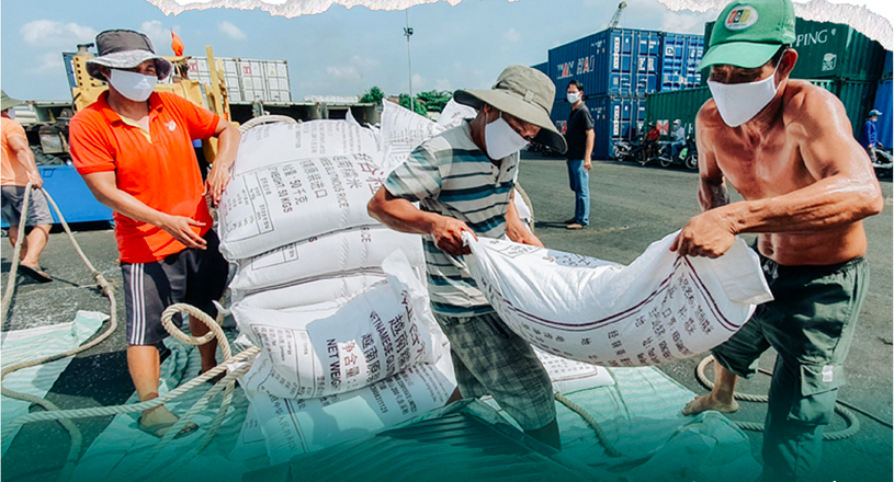 Containers of rice are docked at An Giang Province, waiting to deliver Vietnamese rice to foreign countries. Photo: Chi Quoc/Tuoi Tre
