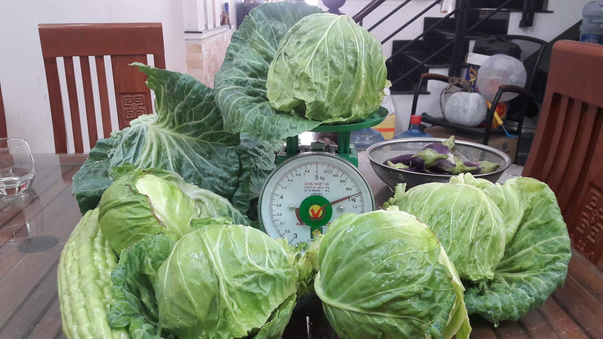 A day's cabbage harvest from a previous year