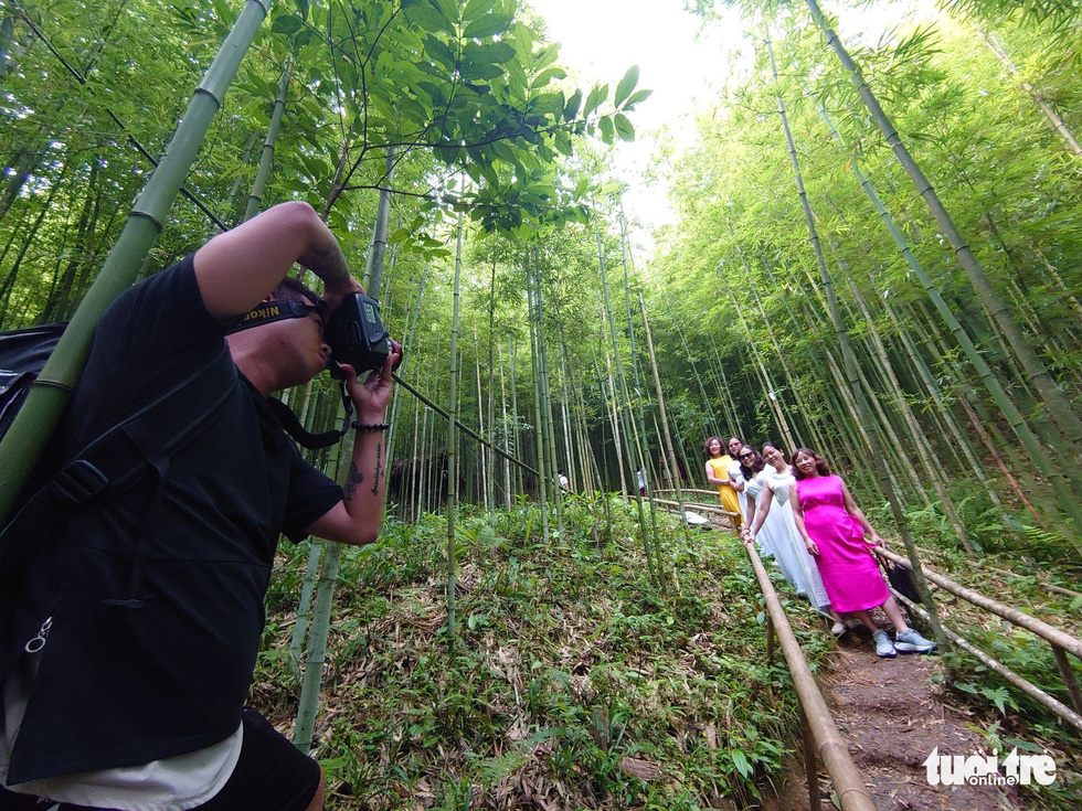 A group of tourists takes photos inside the bamboo forest in Na Hang Tua Chu Village. Photo: Nam Tran/Tuoi Tre