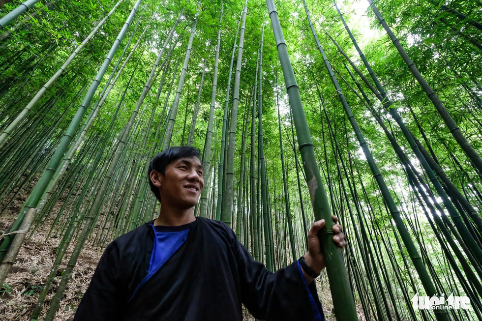 Lu A Tru in the Na Hang Tua Chu Village's proud bamboo forest. Photo: Nam Tran/Tuoi Tre
