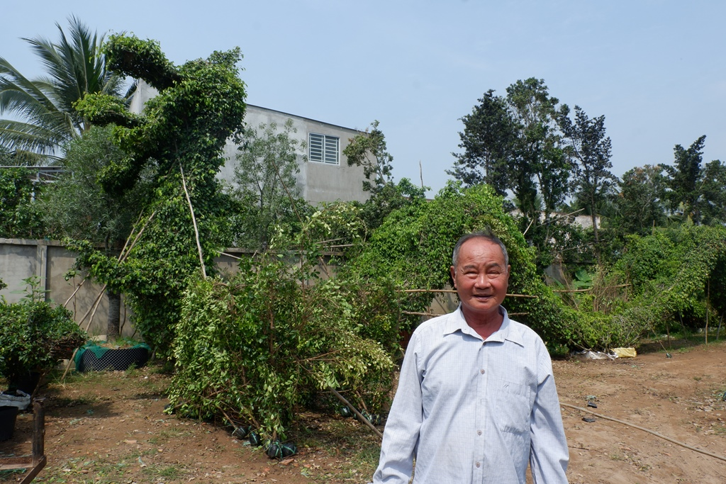 Nguyen Van Cong, better known as Nam Cong, with a pair of ornamental dragons made from weeping fig plants in his garden on January 30, 2021, in Cho Lach District, Ben Tre Province. Photo: Son Lam/ Tuoi Tr