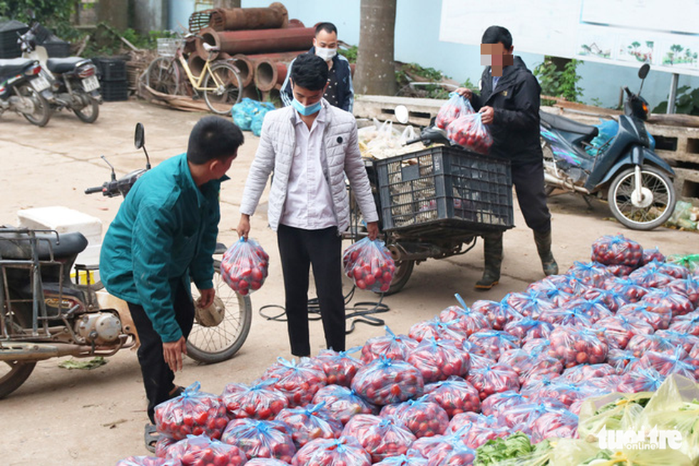 Tomato and sugar beets are ready to be delivered. Photo: Ha Quan/Tuoi Tre