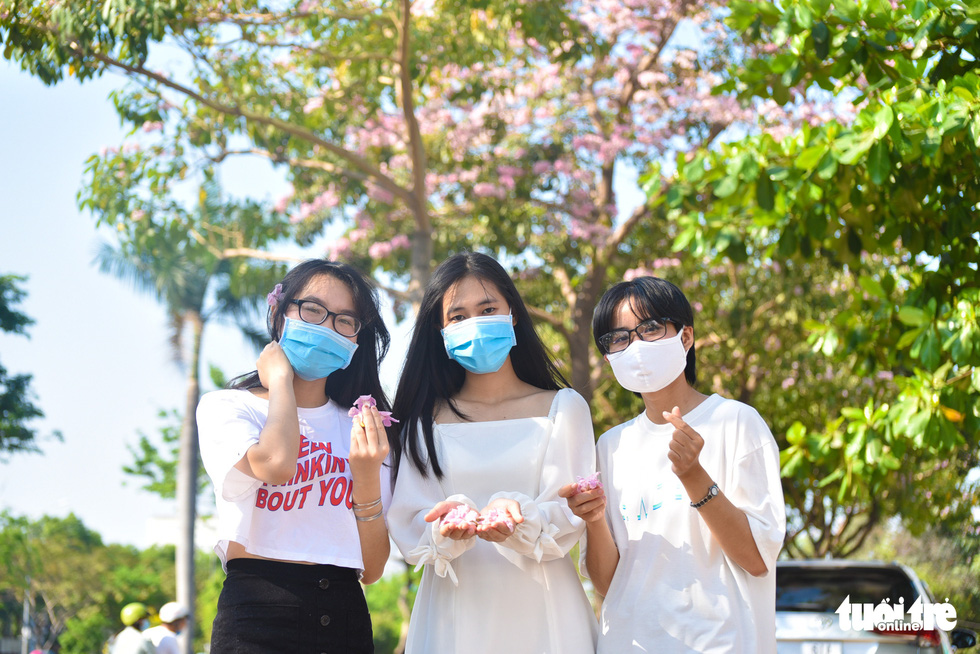 A group of friends delightfully take photos of the blooming trees in Ho Chi Minh City. Photo: Ngoc Phuong / Tuoi Tre