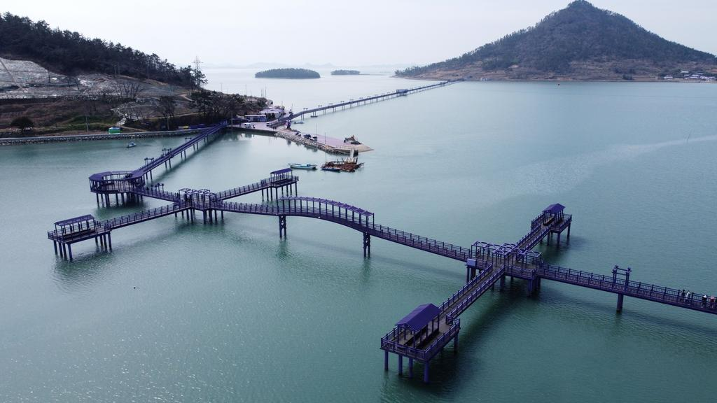 An aerial view shows purple-coloured bridges at the Purple Island in Shinan, South Korea, March 9, 2021. Picture taken March 9, 2021. Photo: Reuters